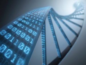 DNS INFORMATIKA