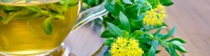 Arany gyökér - Rhodiola rosea